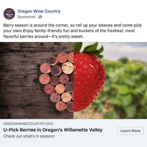 """Oregon Wine Country - """"Wine Plus"""" social campaign - Facebook sample berry"""