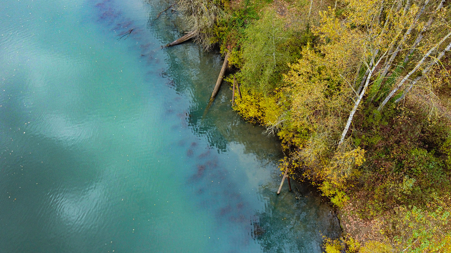 Willamette River from above - Photo by Ron Miller